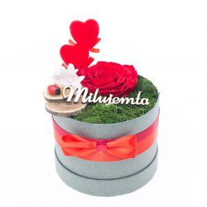 Šedý flower box so stabilizovanou ružou XL